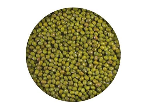 Soja Verde / Alubia Mung